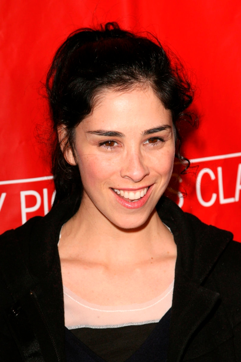 Images Sarah Silverman nude (12 photo), Topless, Hot, Boobs, underwear 2015