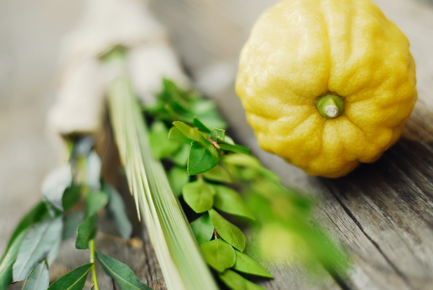 Close-up of round yellow vegetable and green leafy vegetable
