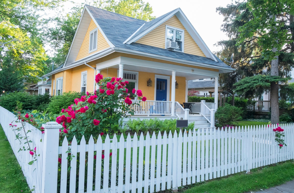 Pink Rose Bush in Front of a Beautiful Yellow House with a White Picket Fence.