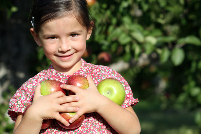 My Favorite New Jersey Spot for Rosh Hashanah Apple Picking With the Kids