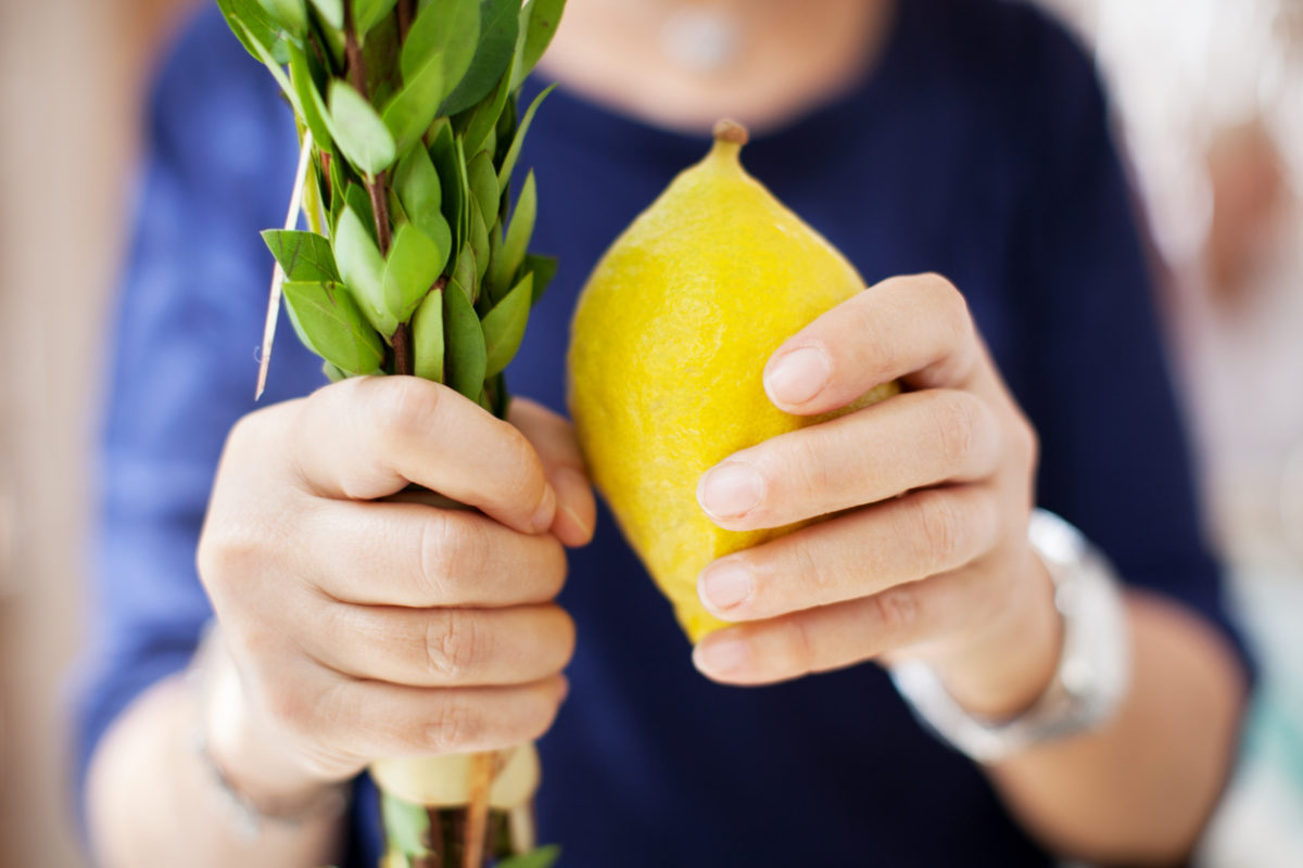 Person holding lulav and etrog